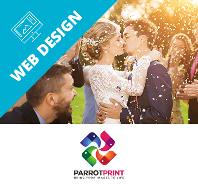 Parrot Print Web Design Development London