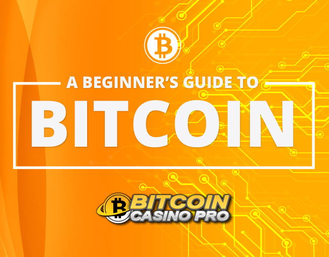 A Beginners Guide to Bitcoin, Creative Design Agency Essex