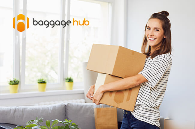 Baggage Hub web design