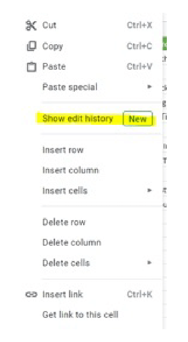 View Your Edit History on excel